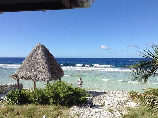 Vahaui Paradis : Parfois passent des requins...