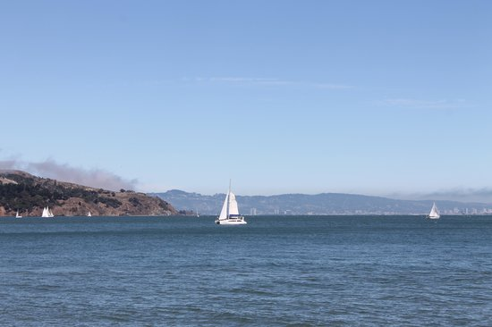 A Friend in Town Tours : America's Cup qualifying from Sausalito