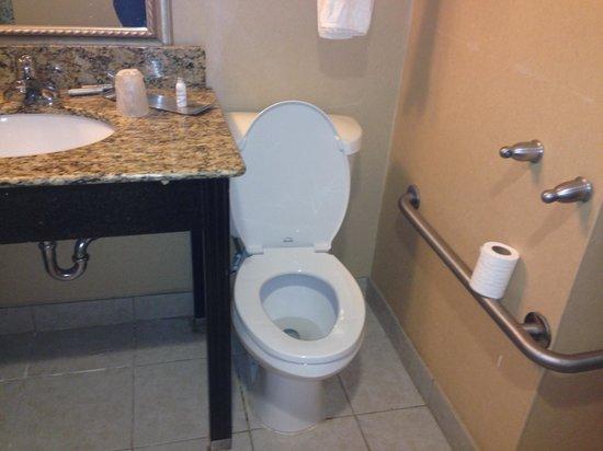 Dayton Grand Hotel : Toilet