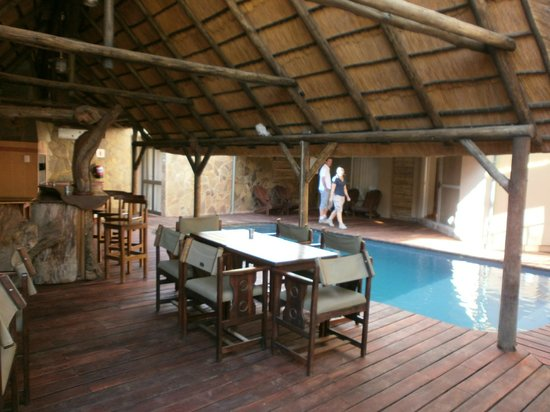 Fig Tree Guesthouse: Piscine