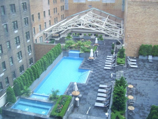 neighbor 39 s pool picture of the warwick hotel rittenhouse. Black Bedroom Furniture Sets. Home Design Ideas