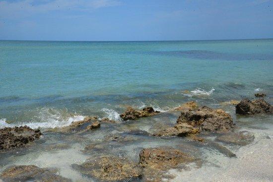 Caspersen Beach: Beautiful water!