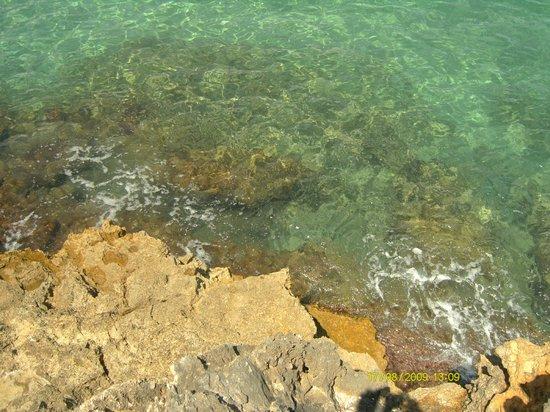Riserva Naturale di Vendicari: Вода в этой бухте прозрачнейшая и чистейшая