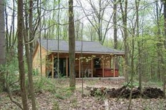 Oak Grove Cabins: spring in the woods