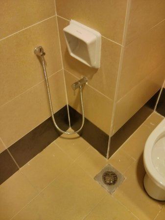 TH Hotel & Convention Centre Terengganu: This aint clean