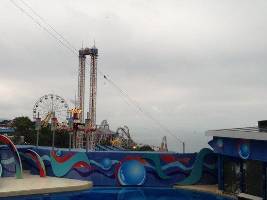 โอเชียนปาร์ค: one of the shows at Ocean park