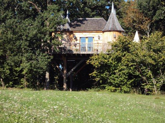 terrasse de la cabane picture of chateaux dans les arbres bergerac tripadvisor. Black Bedroom Furniture Sets. Home Design Ideas