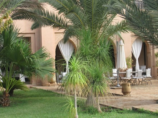 Riad le Perroquet Bleu : jardin