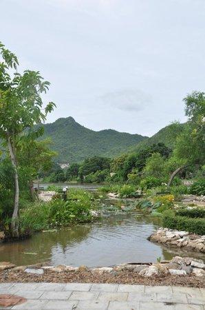 Kasem Island Resort : Vue du jardin