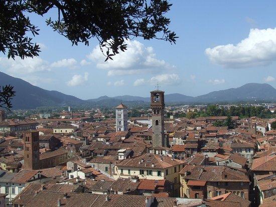Al Podere di Rosa: Lucca