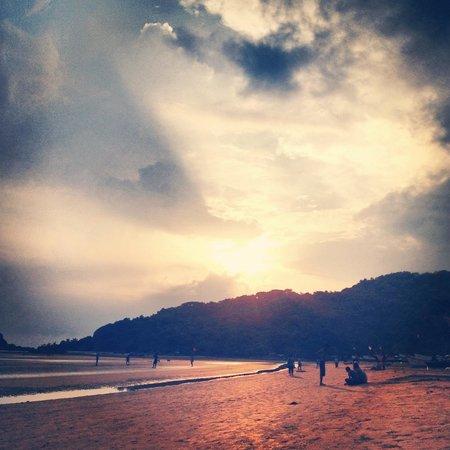 Morjim: Palolem beach, Goa