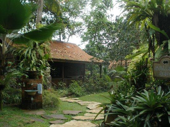 Widayanto Ceramic House : rumah widayanto