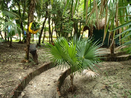 Iberostar Cozumel: Beautiful Grounds