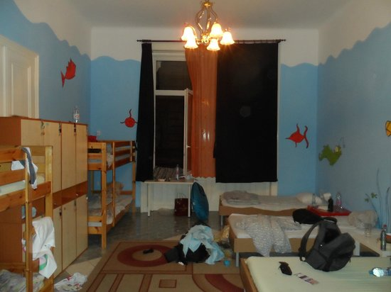 Big Fish Budapest Hostel: Dorm Room