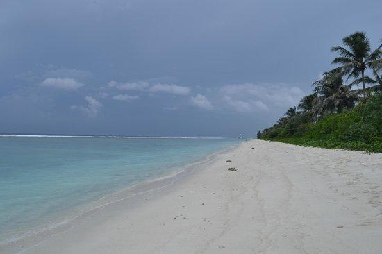 Hulhumale Inn: strand