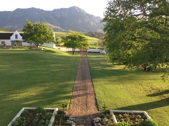 The Oaks Estate Greyton: The drive up to the main house