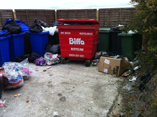 Gwesty'r Marine Hotel: The rubbish area!