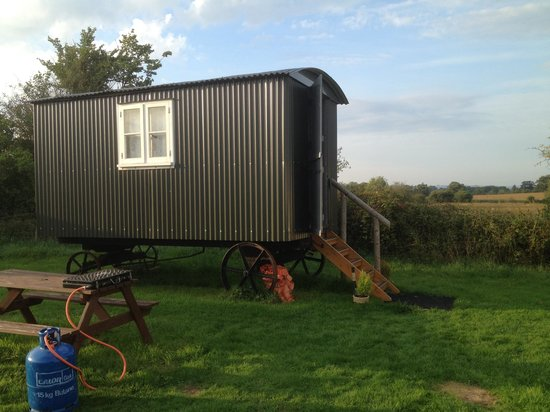 Dorset Country Holidays Glamping: Our Shepards Hut :)