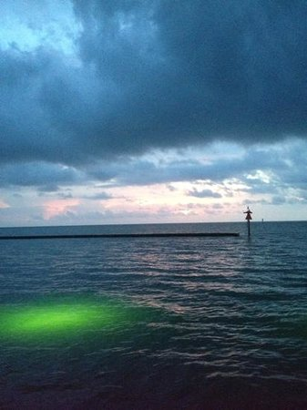 Lighthouse Inn at Aransas Bay: Sunrise from the fishing pier