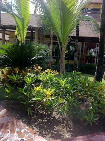 Excellence Punta Cana: beautiful grounds