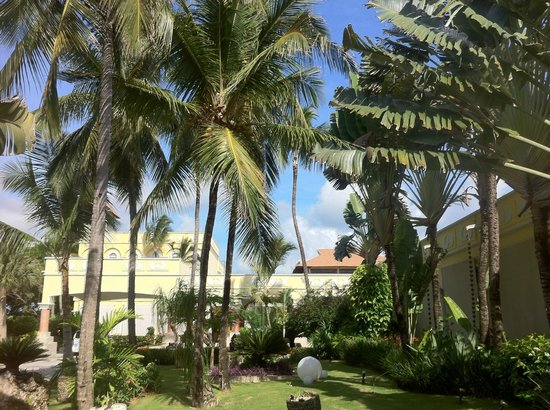 Excellence Punta Cana: pretty