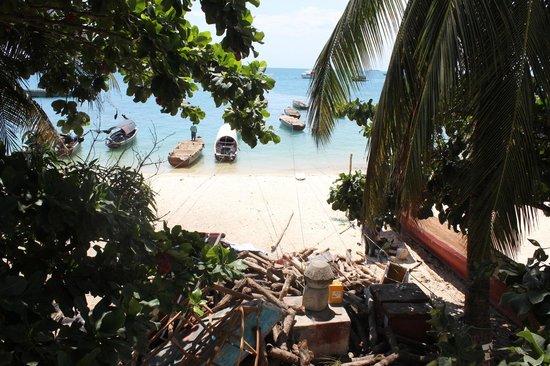 Archipelago : Vistas