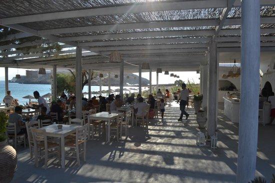 Koumpara Seafood Restaurant: TERRACE
