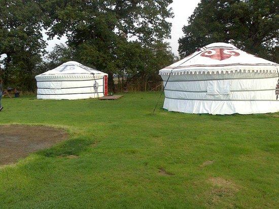 Dorset Country Holidays Glamping: yurts