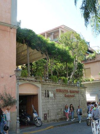 First floor orange grove! - Picture of Terrazza Marziale, Sorrento ...