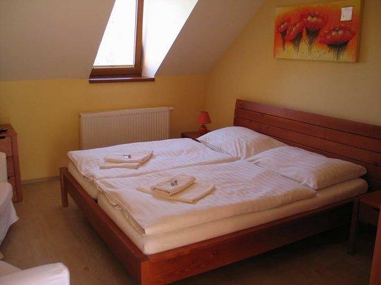Penzion Delanta: room