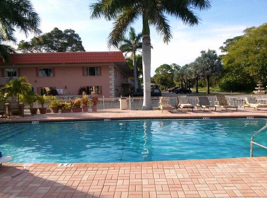 Hibiscus Suites - Sarasota / Siesta Key: Pool