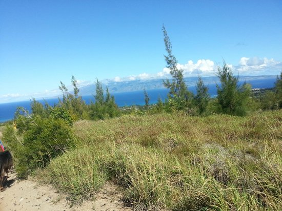 Ironwood Ranch : Molokai island in the distant