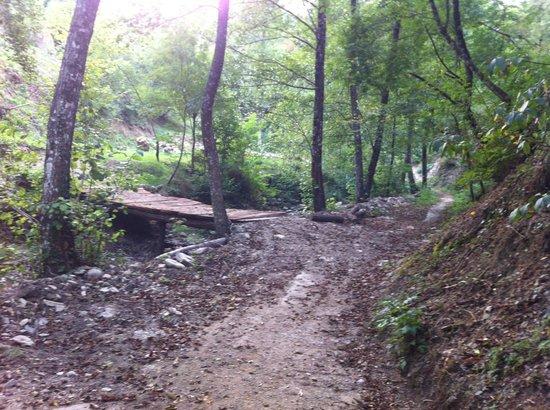 Camping Le Sorgenti : Sentiero