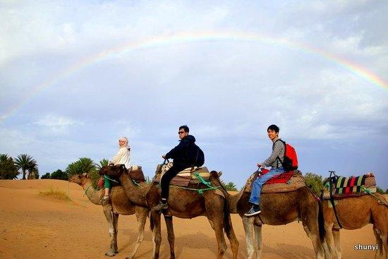 Best Of Merzouga - Day Tour: Rainbow in Sahara