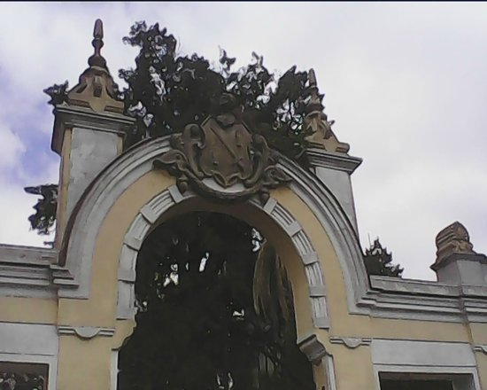 Bodegas Fundador: Puera regia, detalle.