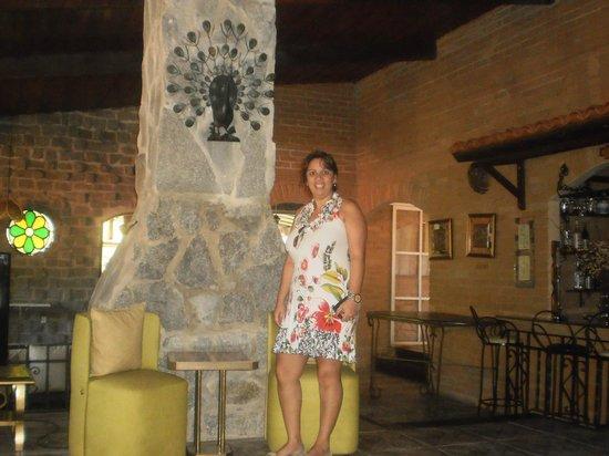 Hotel da Cachoeira : sala de estar