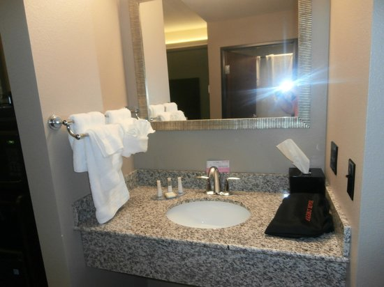 Baymont Inn & Suites Bellevue : Vanity with complimentary shampoo, conditioner, etc.  Nice to have blow dryer seperate!