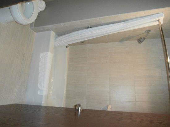 Baymont Inn & Suites Bellevue : Standard bathroom but nice fluffy towels.