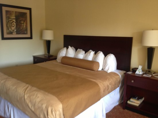 BEST WESTERN Oak Manor: King bed in standard room