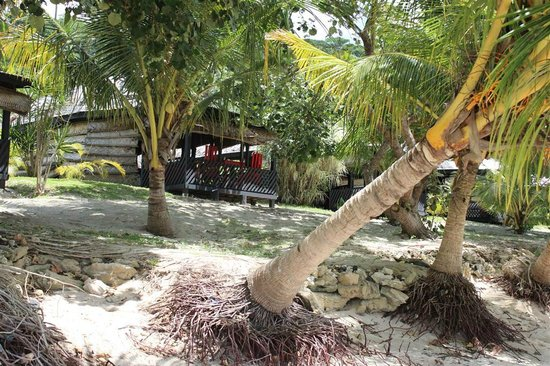 Stevenson's at Manase: beach fales
