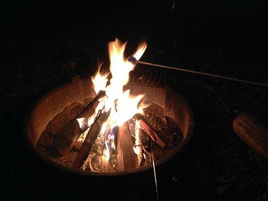 Boston/Cape Cod KOA: Fire pits at every site.