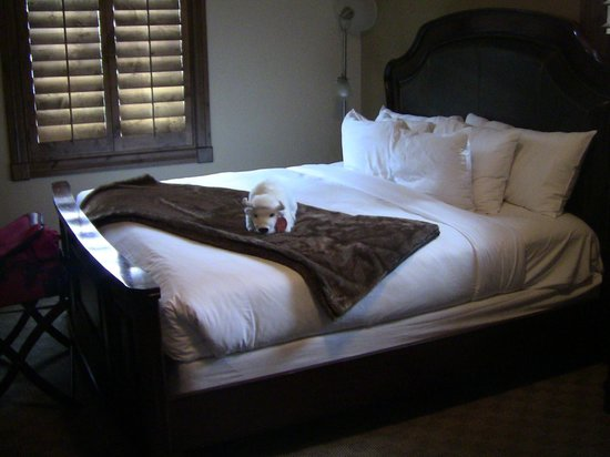 White Buffalo Club - Hotel: One of our two beds