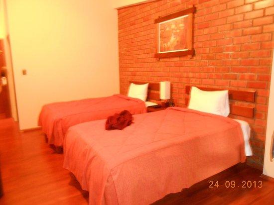 Andina Luxury: Vista geral do quarto com as camas