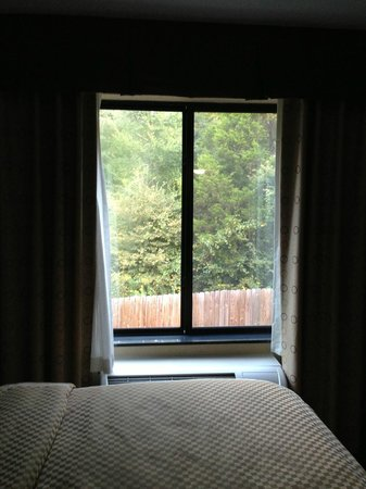 Comfort Suites Whitsett - Greensboro East: Different room locations will give different window views.