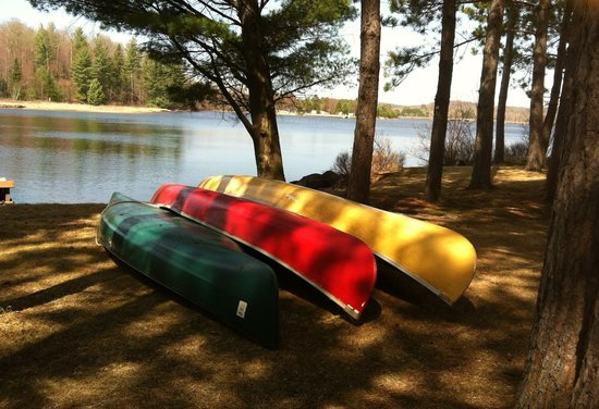 Algonquin's Edge Resort: Take a canoe ride to the beautiful Moores falls