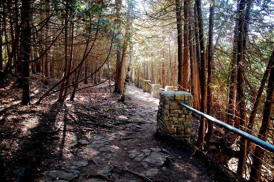 Elora Gorge Conservation Area: Beautiful Nature