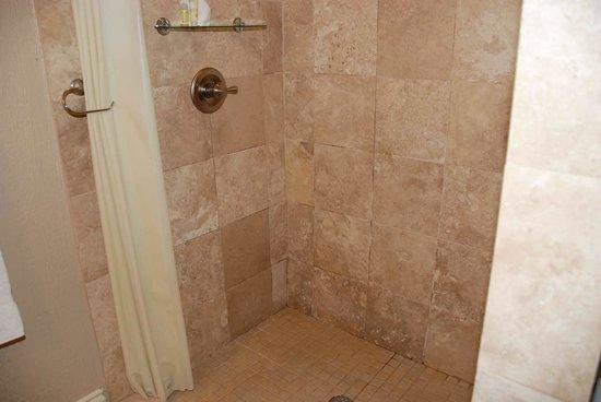 Niagara Crossing Hotel & Spa: Shower - Mold in bottom Corners