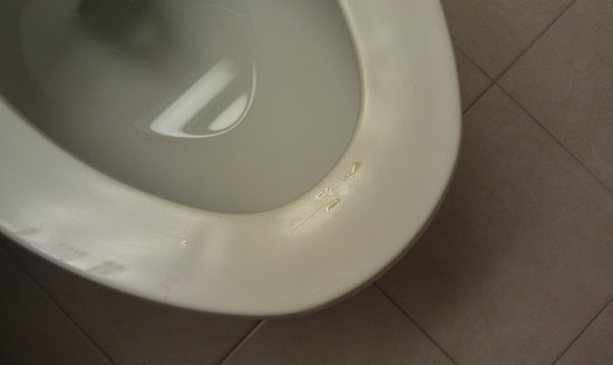 Microtel Inn & Suites by Wyndham Philadelphia Airport: Urine on the toilet seat