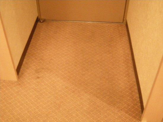 Aomori Kokusai Hotel : Gross Rug