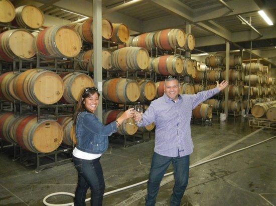 Healdsburg Wine Tours: Enjoying a great tour